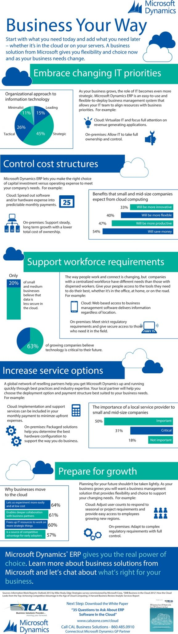 Infographic: Business Your Way With Microsoft Dynamics